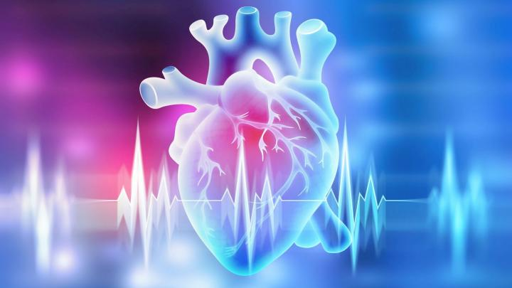 Expert: It takes at least two years to make up for heart surgery