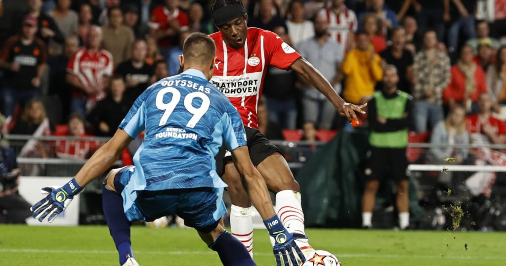 UEFA Champions League Qualifiers: Results and Relationships.  PSV Eindhoven - Benfica, Ferencvarusi - Young Boys, Odugurek - Malmö